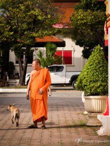 Thailand-pukhet-buddhism-temple-Hochzeitsfotografie-Berlin-3730